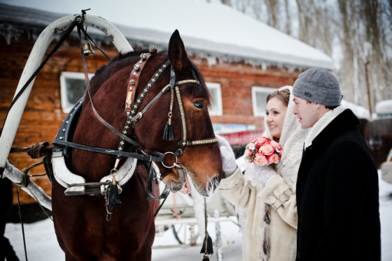 Winter wedding with a horse