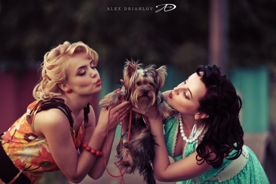 Pin up with a dog
