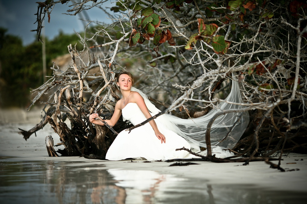 Beach wedding photosession