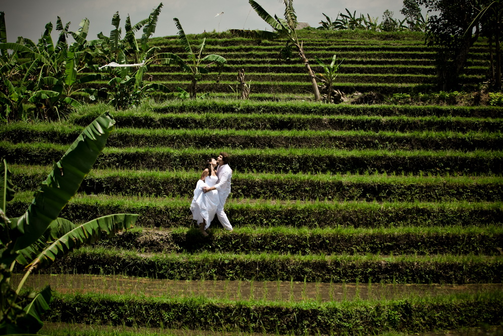 Rice fields photosession Bali